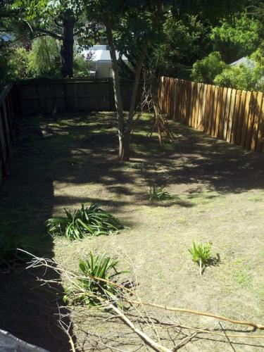 Back Yard: After